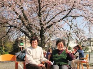 施設前の桜は柏市内でもピカイチ。この桜の木の下でお花見は恒例イベントの1つです