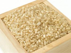 ワンポイント薬膳 玄米