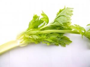 vegetables-2085017_1920