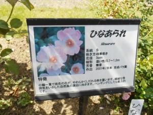 blog201909_2c