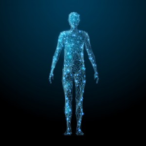 Human body low poly wireframe. Vector polygonal image in the form of a starry sky or space, consisting of points, lines, and shapes in the form of stars with destruct shapes.
